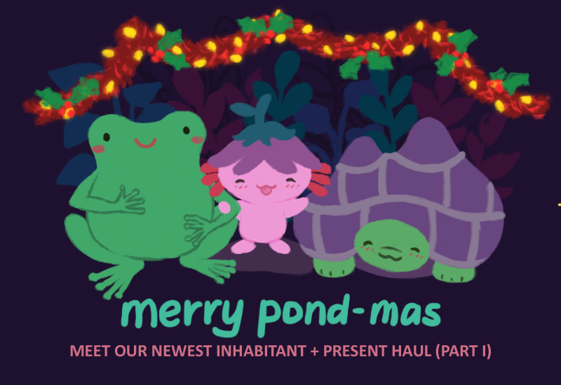 Text at the bottom reads: Merry Pond-mas; Meet our newest inhabitant + present haul (part 1).
