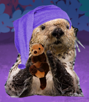 Photorealistic image of an otter wearing a purple pajama cap, holding a plush otter.