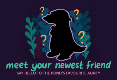 Meet Your Newest Friend: Say Hello to the pond's favourite aunty