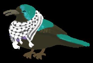 Illustration of a Palestinian Sunbird wearing a keffiyeh